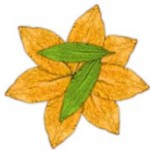 Flavour Art 7-leaves @ smokedifferent.ie