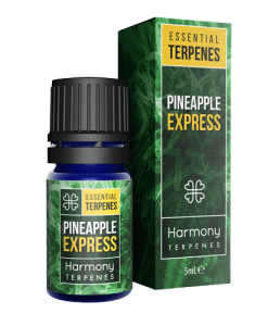 Pineapple-express-terpene-oil-smokedifferent