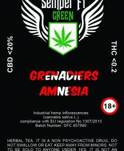 GRENADIERS_AMNESIA_UPD_TEA