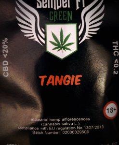 cbd-tea-tangie-flavor